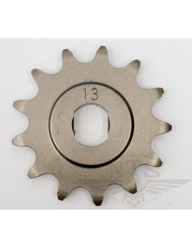 Framdrev 13T Sachs (plant)