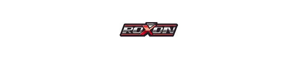 Roxxon Duell